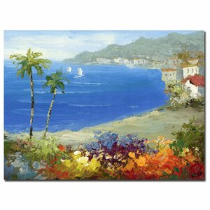 Mediterranean Beach by Rio Framed Painting Print on Wrapped Canvas by Trademark Fine Art