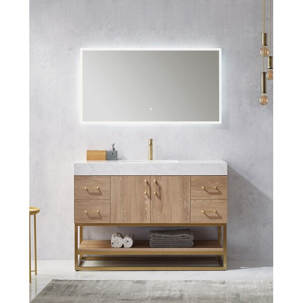 Ladson 48 Single Bathroom Vanity Set with Mirror