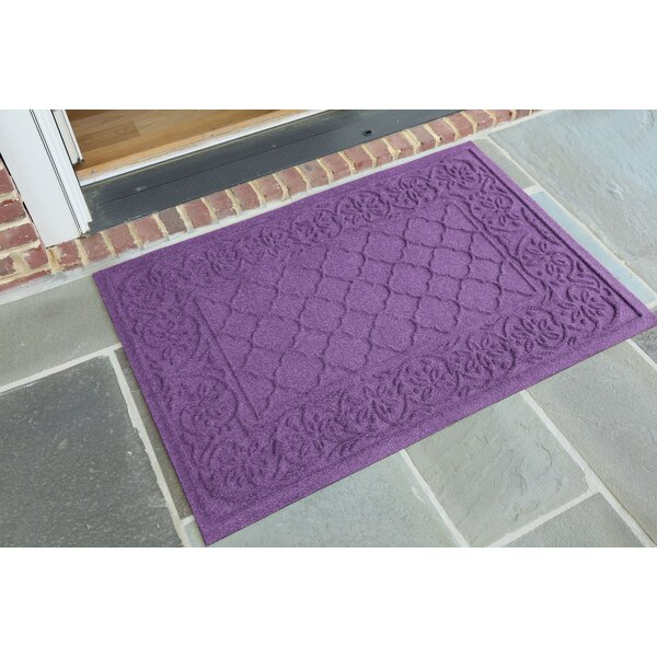 Michiel Rosalie Doormat by Darby Home Co