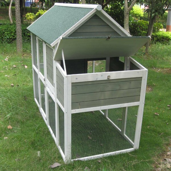 Coops and Feathers™ Superior Hen House with Free Range Door by Innovation Pet