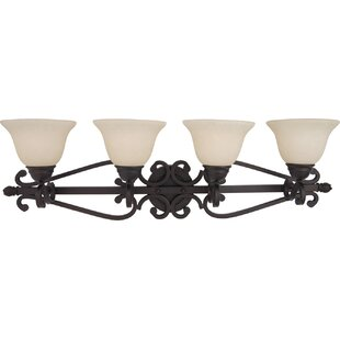 Best Choices Amelia 4-Light Vanity Light By Darby Home Co