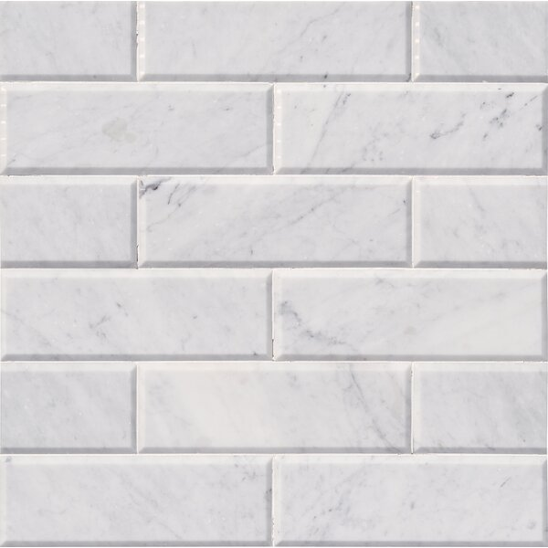 Arabescato Hon And Big Bev 4 x 12 Marble Subway Tile in White by MSI