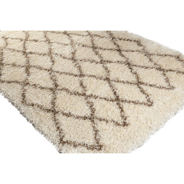 Evelyn Shag Hand-Woven Area Rug by Birch Lane™