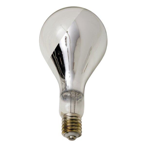 Big Base Side Chrome Light Bulb by Nuevo