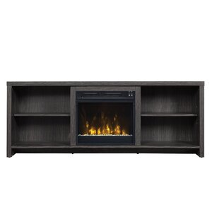 Fireplace TV Stands & Entertainment Centers You ll Love