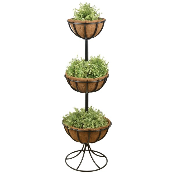 Carbon Steel Basket Triple Plant Stand by EsschertDesign