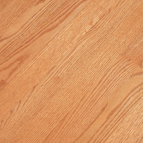 Fulton 2-1/4 Solid Red Oak Hardwood Flooring in Low Glossy Butterscotch by Bruce Flooring