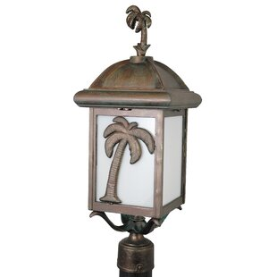 Best Reviews Penfield Palm Tree Series 1-Light Lantern Head By Alcott Hill