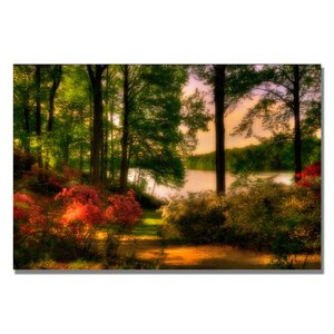'A Walk in the Park' Photographic Print on Canvas by Trademark Fine Art