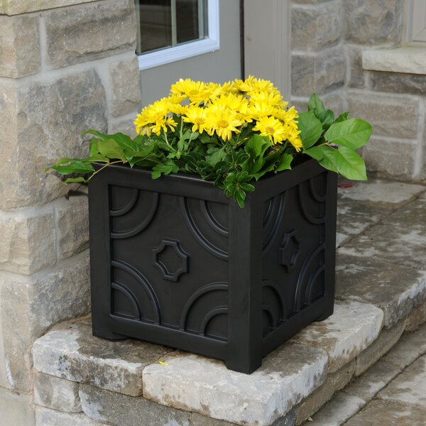 Savannah Self-Watering Plastic Planter Box by Mayne Inc.