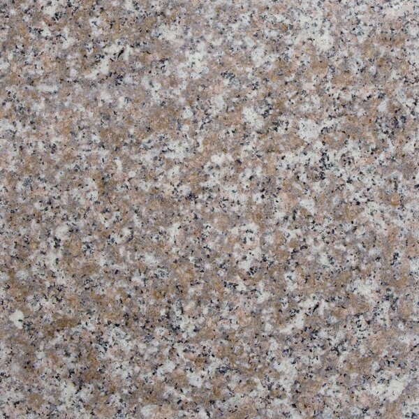 12 x 12 Granite Field Tile in Peach by MSI