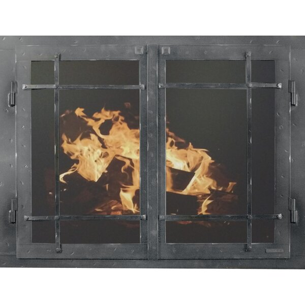 Mountain Series Cabinet Style Steel Fireplace Door by Ironhaus, Inc.