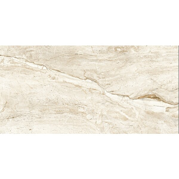 Thin Porcelain 23.6 x 47.2 Porcelain Field Tile in Beige Calacatta Oro by Abolos