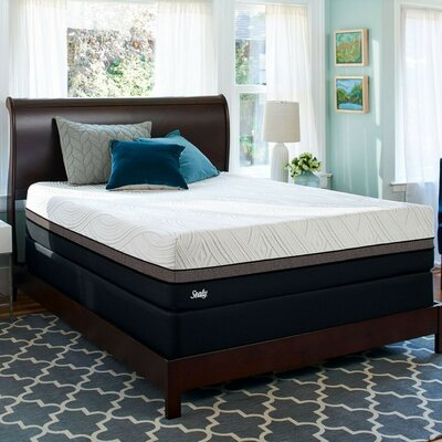 Sealy Premium Firm Mattress Mattress Foam Mattresses