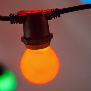 Bargain 50-Light Globe String Lights By Wintergreen Lighting