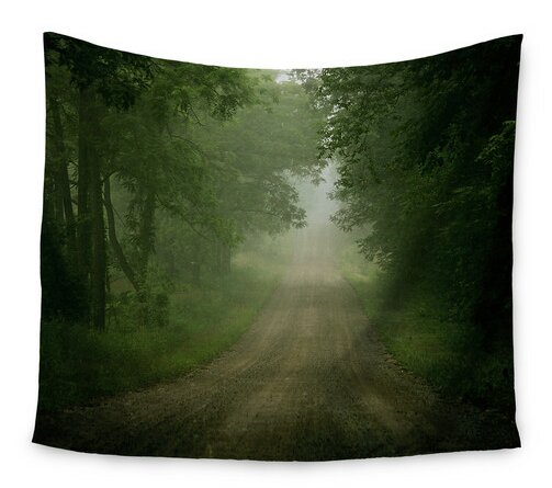 Foggy Road by Angie Turner Wall Tapestry by East Urban Home