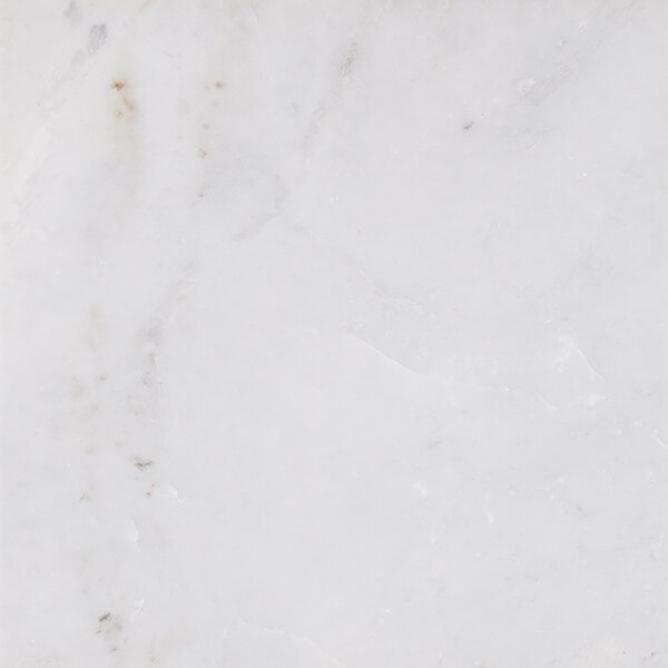 12 x 12 Marble Field Tile in Arabescato Carrara by MSI