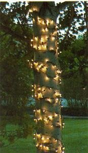 Mini Trunk Wrap Light by Kringle Traditions