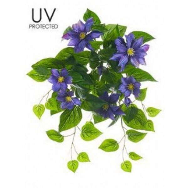 UV Protected Clematis Flowers by August Grove