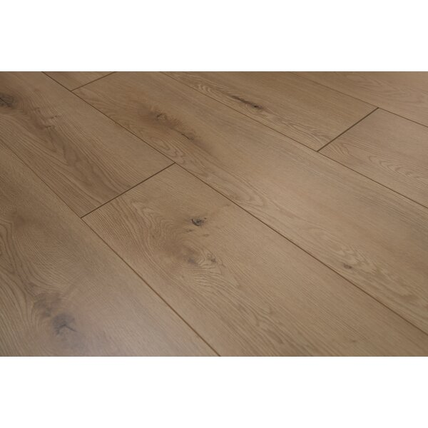 Torre 9 x 48 x 8mm Oak Laminate Flooring in Buckwheat by Branton Flooring Collection