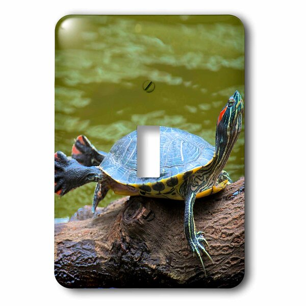 Turtle 1-Gang Toggle Light Switch Wall Plate by 3dRose