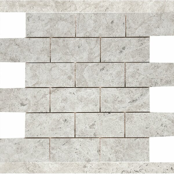 Marble 2 x 4 Stone Mosaic Tile in Antique Gray Polished by Parvatile