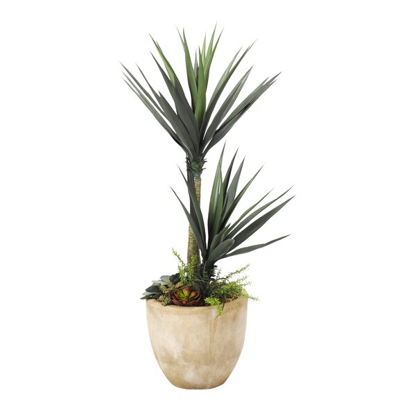 Floor Aloe Plant in Planter by Bayou Breeze