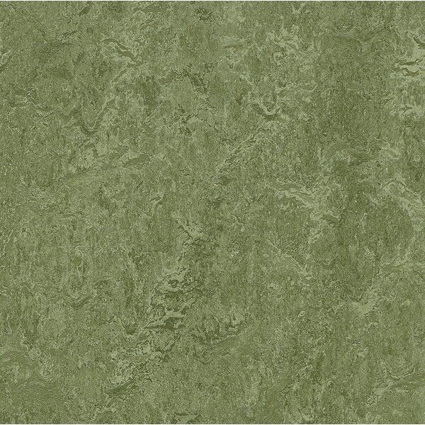 Marmoleum Click Cinch Loc 11.81 x 35.43 x 9.9mm Cork Laminate Flooring in Green by Forbo