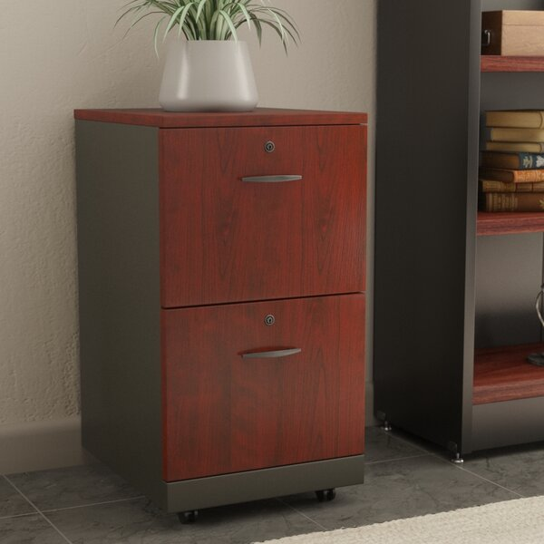 Castalia 2 Drawer Filing Cabinet by Red Barrel Studio