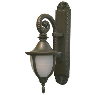 Bargain Phillipstown 1-Light Outdoor Wall Lantern By Alcott Hill