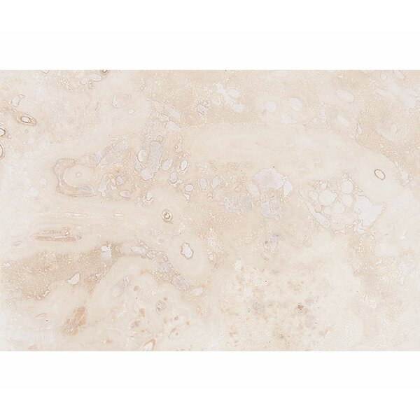 Classic 16 x 24 Travertine Field Tile in Honed Ivory by Parvatile