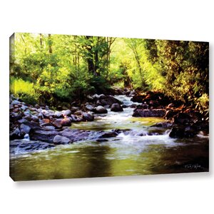 'Woodland Brook' Photographic Print on Wrapped Canvas by Red Barrel Studio