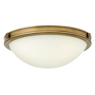 Find the perfect Maxwell 2-Light Flush Mount By Hinkley Lighting