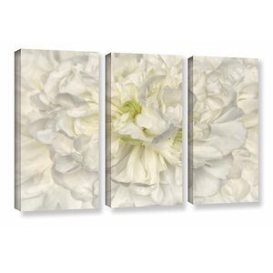 'Pure White Peony' 3 Piece Painting Print on Wrapped Canvas Set by Willa Arlo Interiors