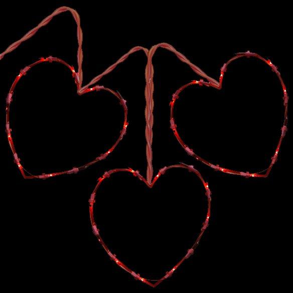 3 Fluttering Heart by Penn Distributing