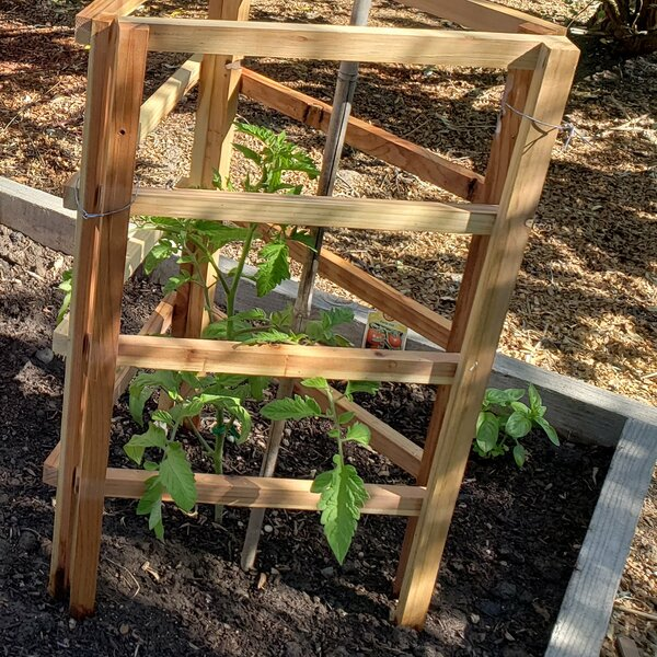 6-Piece Wood Lattice Panel Trellis by Oregon Wood Products