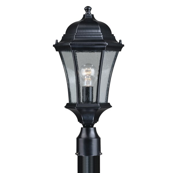 Carnanreagh 1-Light Outdoor Lantern Head by Astoria Grand