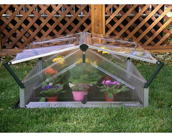 3.5 Ft. W x 3.5 Ft. D Cold-Frame Greenhouse by Palram