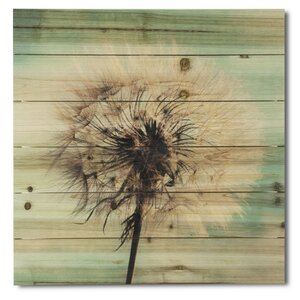 'Dandelion Wishes' Photographic Print on Wood by Gallery 57