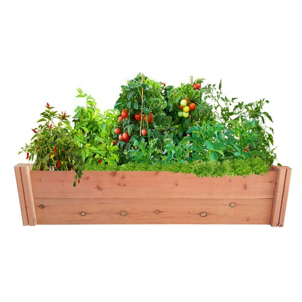 4 ft x 1 ft Redwood Raised Garden by GroGardens