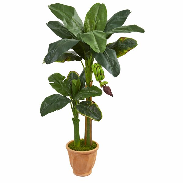 Double Stalk Artificial Banana Leaf Tree in Planter by Bayou Breeze