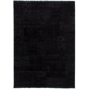 Clearance Decarlo Black Area Rug By17 Stories