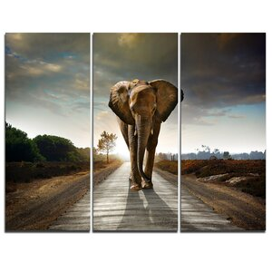 Single Walking Elephant - 3 Piece Graphic Art on Wrapped Canvas Set by Design Art