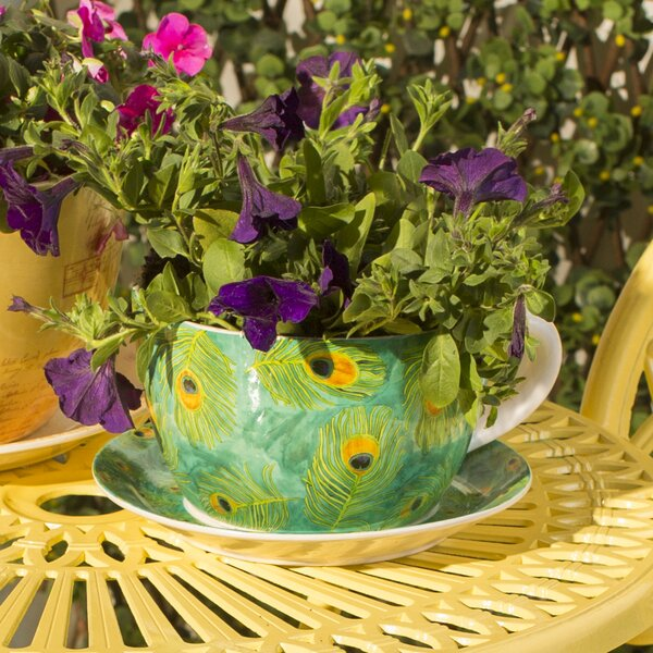 Gambrel Peacock Novelty Dolomite Pot Planter with Saucer by Bloomsbury Market
