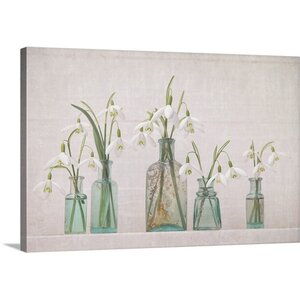 'Snowdrops Bottles' by Cora Niele Photographic Print on Wrapped Canvas by Great Big Canvas