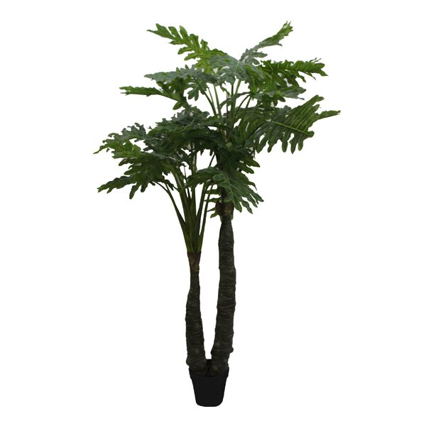 Philodendra Floor Palm Tree in Pot by Jeco Inc.