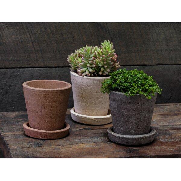 6-Piece Pot Planter Set with Saucer by Campania International