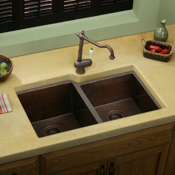 31 L x 21 W Double Basin Undermount Kitchen Sink by Elkay