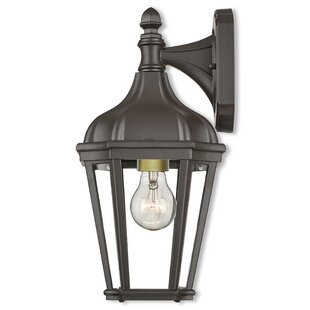 Best Price DeMotte 1-Light Outdoor Wall Lantern By Darby Home Co