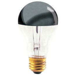 60W 120-Volt Incandescent Light Bulb (Set of 9) by Bulbrite Industries